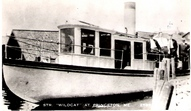 Wildcat Steamer